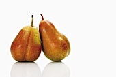 Two Forelle pears leaning against each other