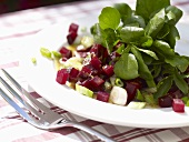 Watercress with beetroot, spring onions, mustard dressing