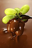 Grapes in chocolate sauce