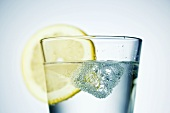 Ice cube and slice of lemon in a glass of water