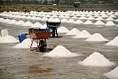 Salt pans in Thailand