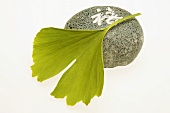 Ginkgo leaf and Japanese stone (symbol of wellness)