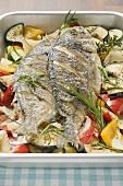 Sea bream on Mediterranean vegetables