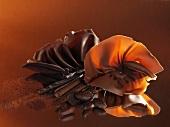 Schokofächer, Schokoröllchen, Kakaopulver, Kakaobohnen