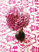 Chrysanthemum in a vase on a patterned tablecloth