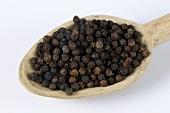 Malabar pepper (Piper nigrum)
