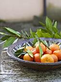 Mandarin oranges with leaves in ceramic dish