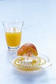 Orange half on citrus squeezer, freshly squeezed orange juice