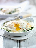 Uova alla fiorentina (Fried egg with spinach, Italy)