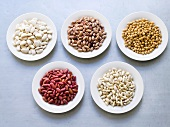 Various types of dried beans