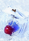 Cherry in a block of ice (close-up)