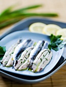 Alici marinate (anchovies in olive oil with herbs, Italy)