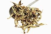 Dried verbena leaves on measuring spoon