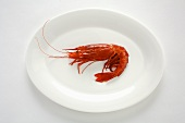 A cooked prawn on a plate
