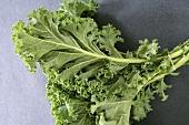 Kale leaves, tied together