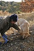 Mann mit Hund bei der Trüffelsuche (Frankreich)