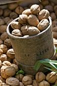 Walnuts in a measuring tub