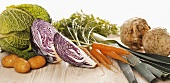 Winter vegetables (savoy, potatoes, red cabbage, carrots, leeks, celeriac)