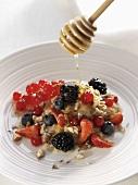 Trickling honey over muesli with berries