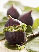 Figs stuffed with cashew cheese and cress
