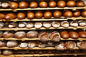 Various types of bread on wooden shelves in a bakery