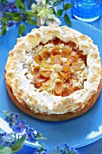 Apricot cake with meringue