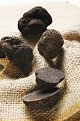 Black truffles (Chinese truffles) on jute sack