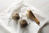 White truffles (Alba truffles) on kitchen roll with brush
