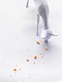 Reh als Figur isst Plätzchen-Krümel