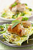Turkey rolls on salad