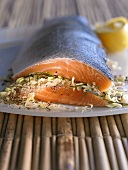 Salmon with Asian dry marinade