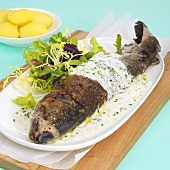 Trout in white wine sauce