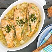 Stuffed salmon on sauerkraut (Alsace)