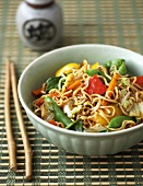 Chow mein (Egg noodles with chicken and vegetables, China)