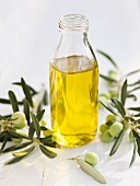 A bottle of olive oil with olive sprigs