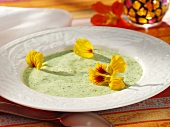 Herb soup with nasturtium flowers