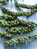 Clusters of green peppercorns