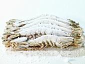 Frozen king prawns