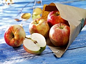 Fresh apples with paper bag