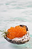Salmon caviar in a shell