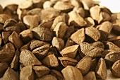 Brazil nuts (Bertholletia excelsa)