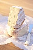 Saint Albray cheese