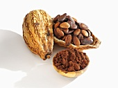 Cocoa powder and cocoa beans in cocoa pod