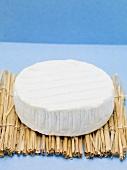 Camembert on straw mat