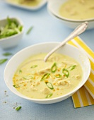 Curried chicken soup with spring onions