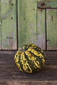 Green and yellow squash (Harlequin)