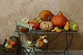 Assorted squashes and pumpkins on old garden table and chair