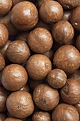 Macadamia nuts in their shells, full-frame