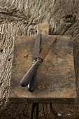 Two old knives on chopping board