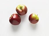 Three apples (variety: Spartan)